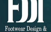 FDDI 12 Executive Director Posts Recruitment 2020 2 FDDI
